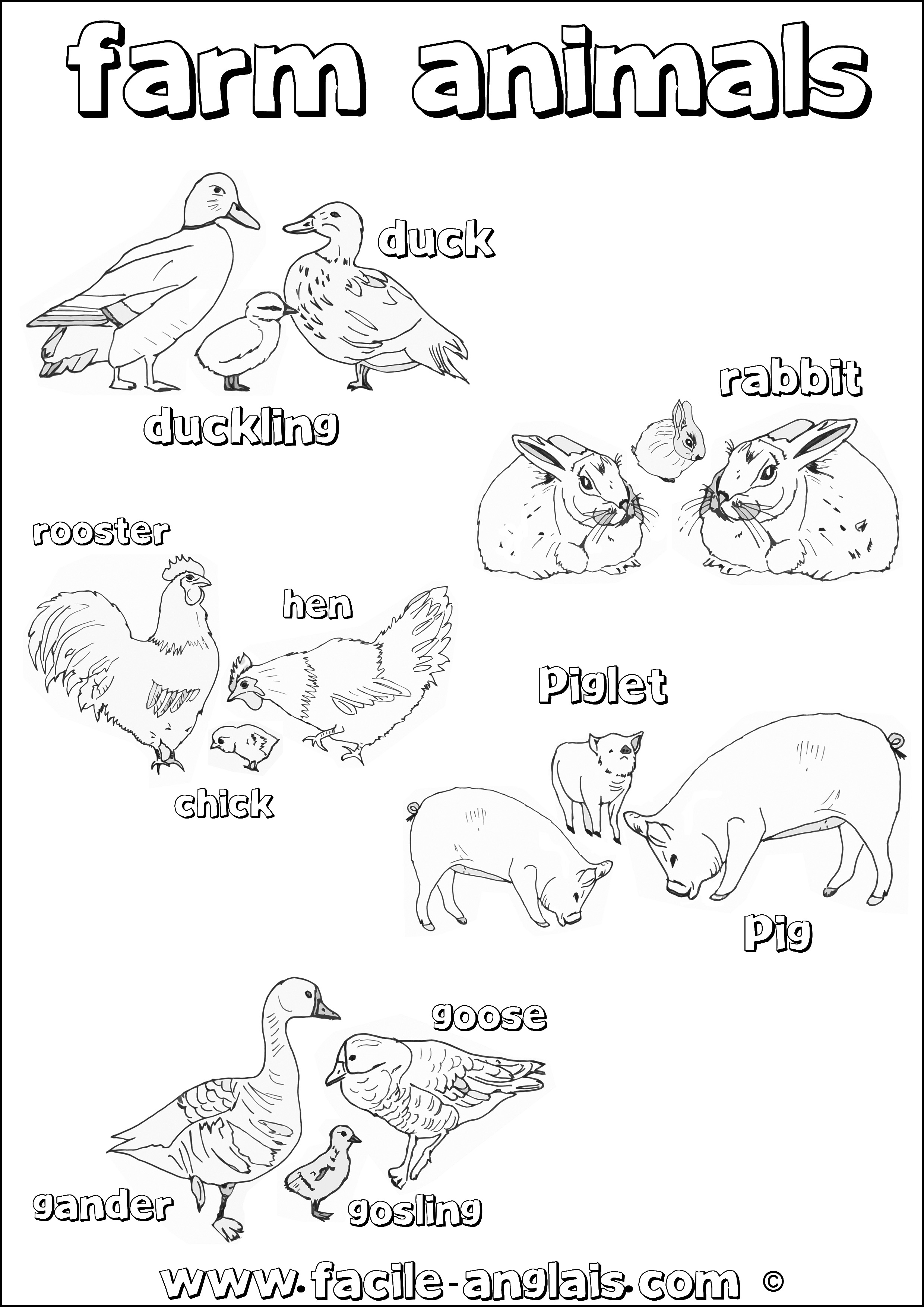 Favori Coloriage 2 sur les Animaux de la ferme en Anglais (Farm Animals  RB69