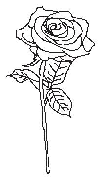 liste de vocabulaire concernant les fleurs flowers anglais facile cours et exercices d. Black Bedroom Furniture Sets. Home Design Ideas